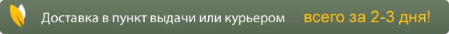 Бесплатная доставка почтой при заказе от 2500 рублей