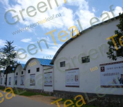 Фабрика по производству чая в Китае Yunnan Yi-Pin-Tang Tea Industrial