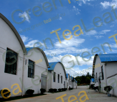 Территория фабрики по производству чая